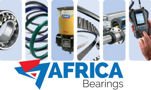 SKF Bearings Products